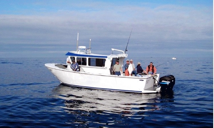 Some Tips for Buying a Fishing Boat