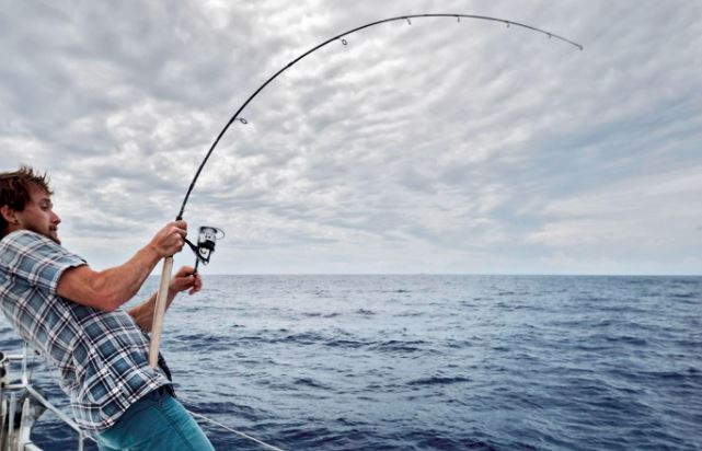 How to choose the right rod